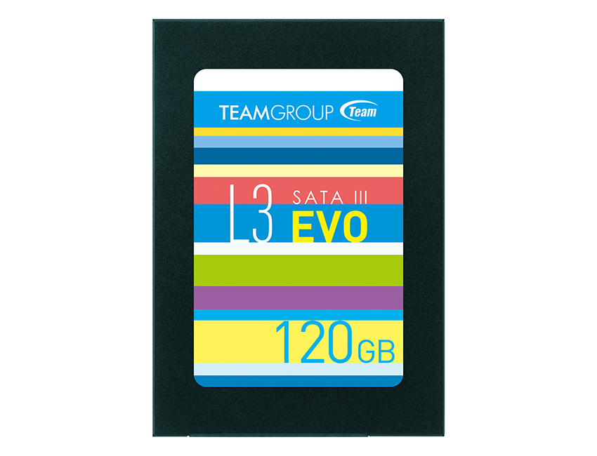TEAM GROUP T253LE120GTC101 L3 EVO 120 GB SERIAL ATA III 2.5