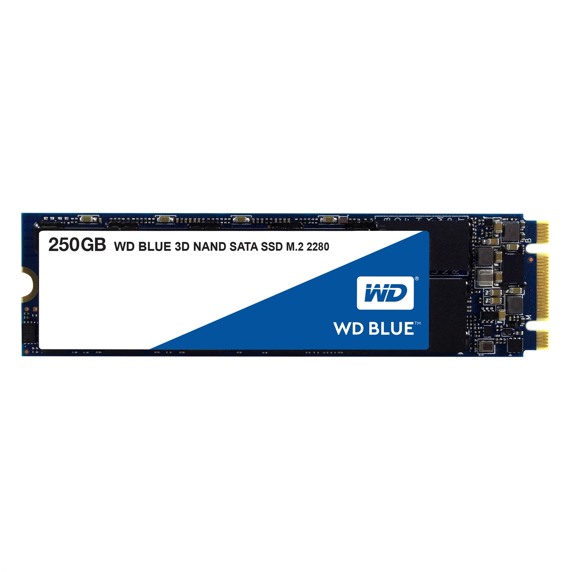 WESTERN DIGITAL BLUE 3D 250GB M.2