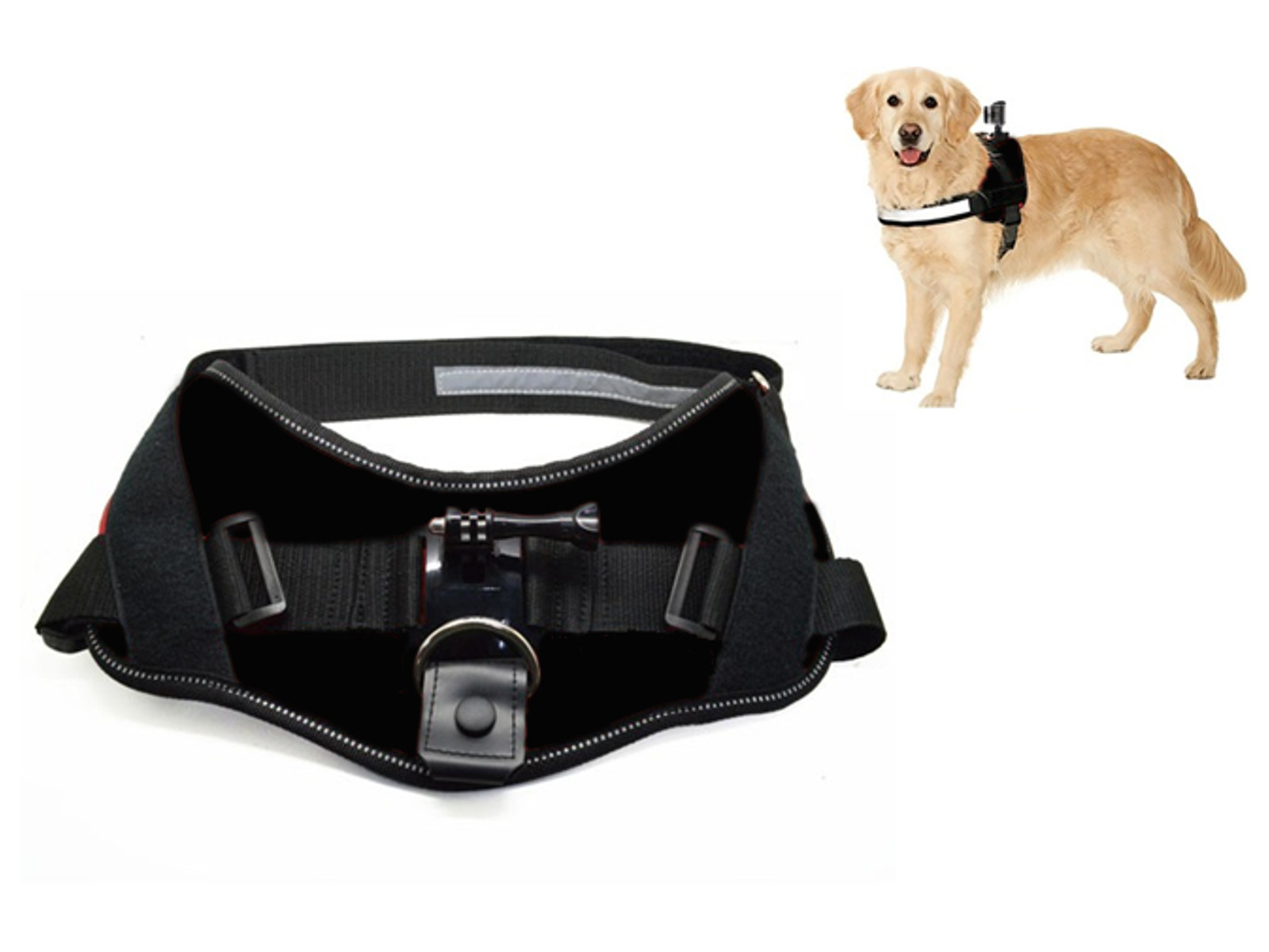 ACTIVEON ACM09DV ACM09DV, DOG HARNESS, DOG, 360, BLACK
