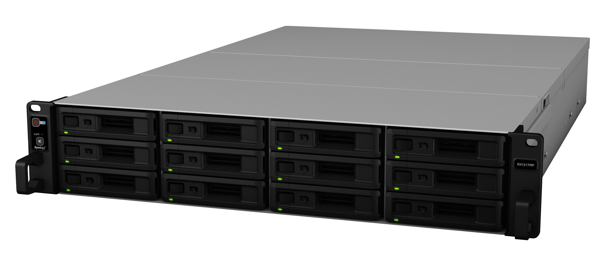 SYNOLOGY RX1217RP/144TB-GOLD 12 BAY NAS