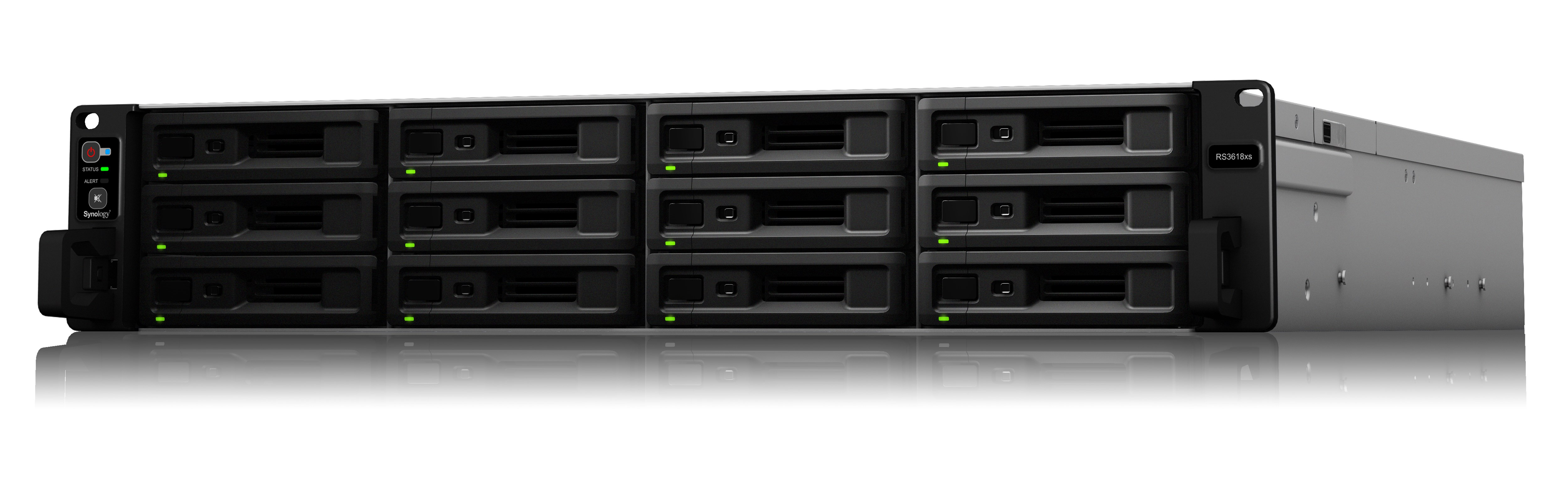 SYNOLOGY RS3618XS/96TB-ENT 12 BAY NAS