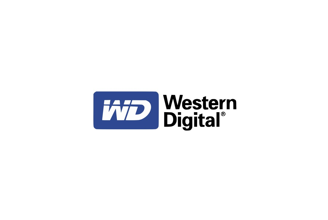 WESTERN DIGITAL AV-GP 500 GB HDD 3,5''