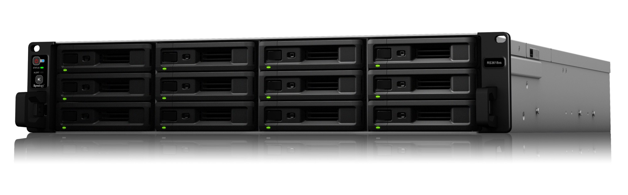 SYNOLOGY RS3618XS/24TB-REDPRO 12 BAY NAS